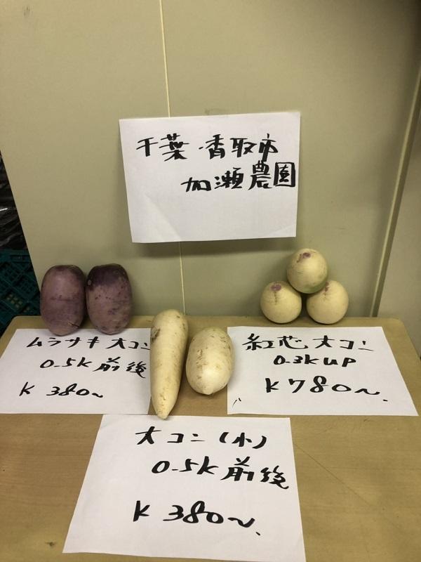 千葉県香取市・加瀬農園