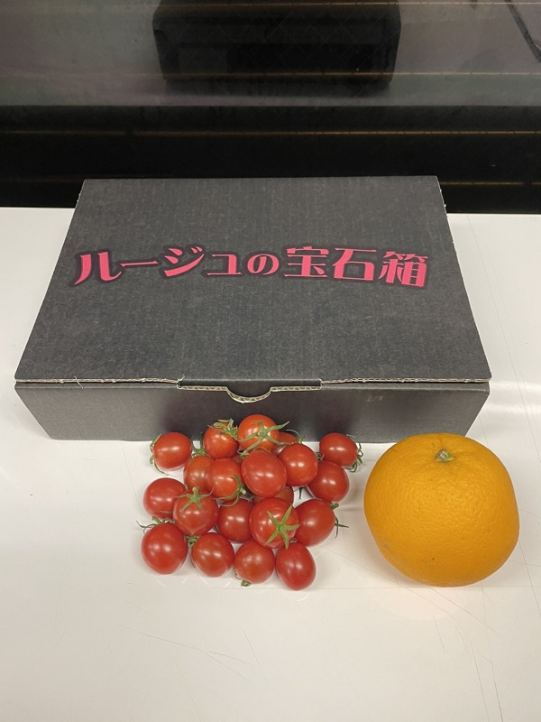 【群馬県産】美しいミニトマト「ルージュの宝石箱」